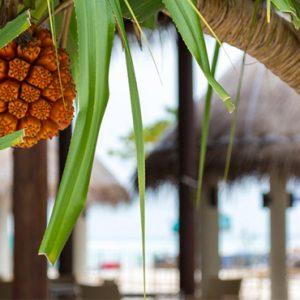 Cocoon Maldives Luxury Maldives Honeymoon Packages Kurum Bar