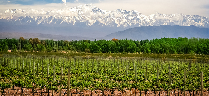 mendoza - Romantic destinations in South America - luxury south america honeymoon packages