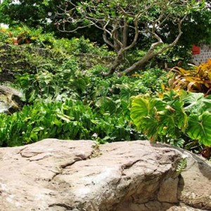Golden Rock Inn - Luxury Nevis Honeymoon Packages - Garden1