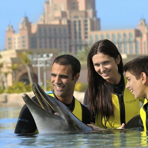 dolphins - Atlantis The Palm dubai - Luxury dubai honeymoon packages