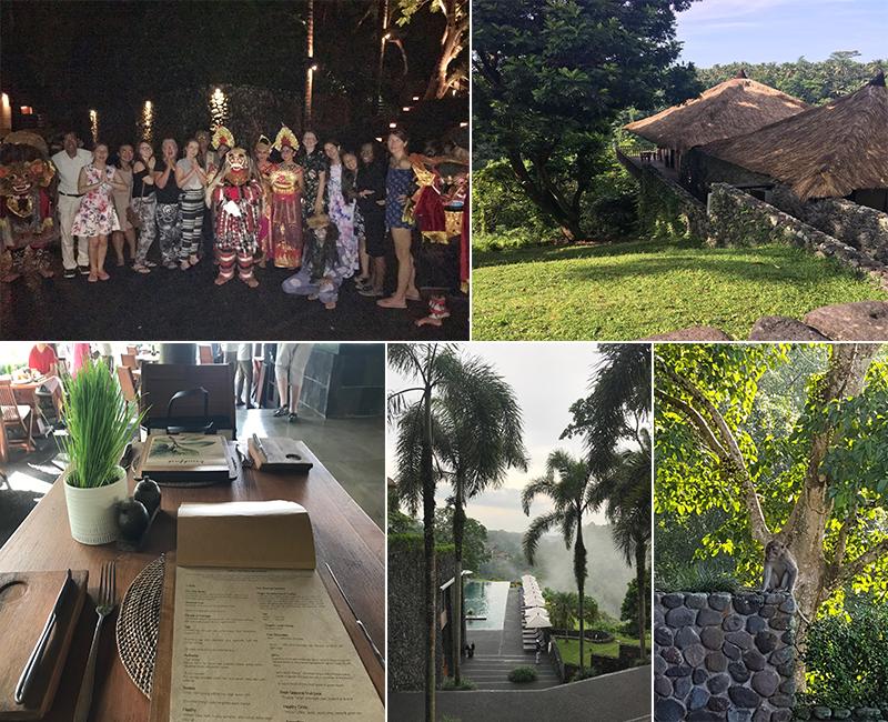Abbies Bali Blog - alila ubud - location overview