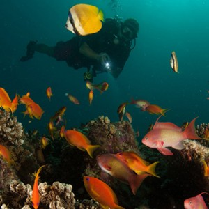 Atmosphere Kanifushi - Luxury Maldives Honeymoon Packages - Watersport activities1