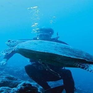 Constance Moofushi - Luxury Maldives Honeymoon Packages - Marine life