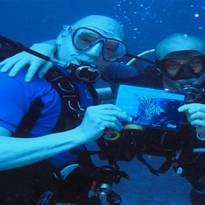 Diamonds Athuruga - Luxury Maldives Honeymoon Packages - diving