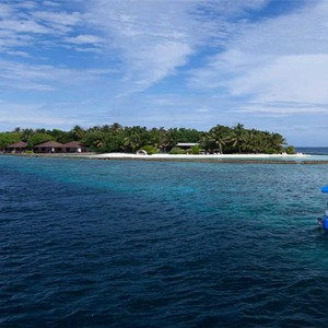 Lily Beach Resort and Spa at Huvahendhoo - Luxury Maldives Honeymoon Packages - penguin excursion