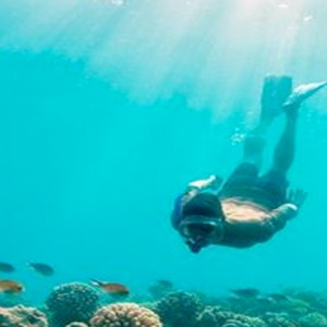 Lux South Ari Atoll - Luxury Maldives Honeymoon Packages - Snorkelling