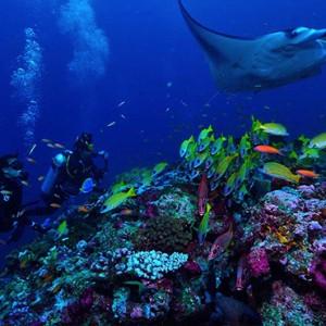 Ozen by Atmosphere at Maadhoo Island - Luxury Maldives Honeymoon Packages - watersport activities4