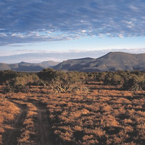 Samara Private Game Reserve - Luxury South Africa Honeymoon Packages - a road through Karoo