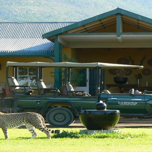 Samara Private Game Reserve - Luxury South Africa Honeymoon Packages - cheetah outside exterior