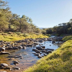 Samara Private Game Reserve - Luxury South Africa Honeymoon Packages - milk river