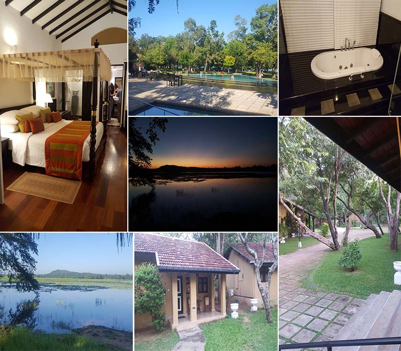 verity sri lanka and maldives fam trip - Cinnamon Lodge Habarana overview