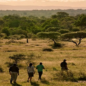 Lion Sands Game Reserve - Luxury South Africa Honeymoon Packages - nature walk