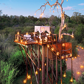 Lion Sands Game Reserve - Luxury South Africa Honeymoon Packages - thumbnail
