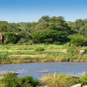 Lion Sands Game Reserve - Luxury South Africa Honeymoon Packages - tinyeletreehouse view