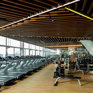 Marina Bay Sands - Luxury Singapore Honeymoon Packages - Banyan tree fitness club