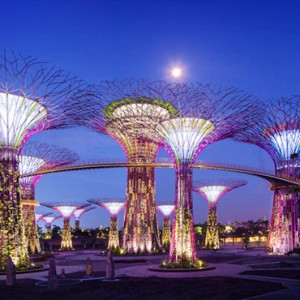 Marina Bay Sands - Luxury Singapore Honeymoon Packages - Gardens by the bay attraction