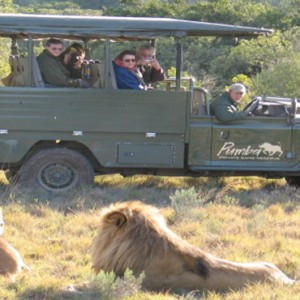 Pumba Private Game reserve - Luxury South Africa Honeymoon Packages - Day Safari