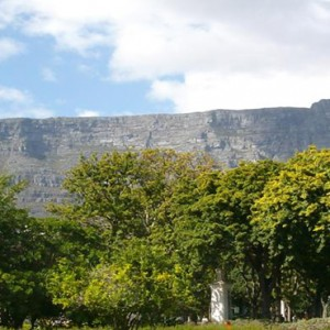 Taj Cape Town - Luxury South Africa Honeymoon Packages - Location1