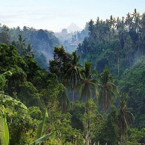 Bali Honeymoon Packages Viceroy Bali Valley Views2