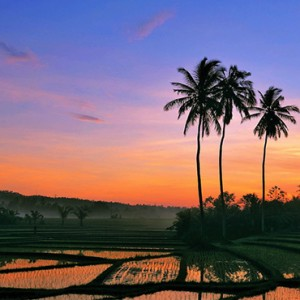 Bali Honeymoon Packages The Laguna Bali Local Attraction3