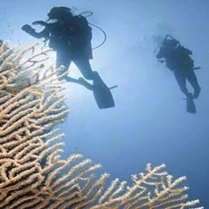 Centara Grand Island Resort & Spa - Luxury Maldives Honeymoon Packages - Scuba diving