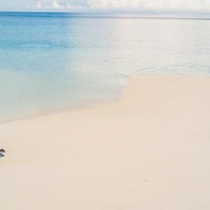 Fiji Honeymoon Packages Royal Davui Island Resort Fiji Beach 4