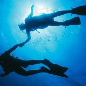 Fiji Honeymoon Packages Royal Davui Island Resort Fiji Marine Life 4