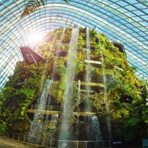 Singapore Honeymoon Packages Fullerton Hotel Gardens By The Bay