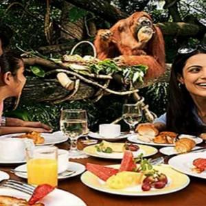 Singapore Honeymoon Packages Fullerton Hotel Singapore Zoo