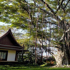 Thailand Honeymoon Packages Chiva Som Hua Hin The Banyan Tree