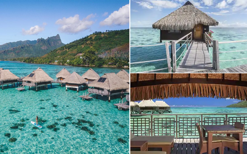 10 Most Romantic Villas In South Pacific Bora Bora Honeymoon Packages Hilton Moorea