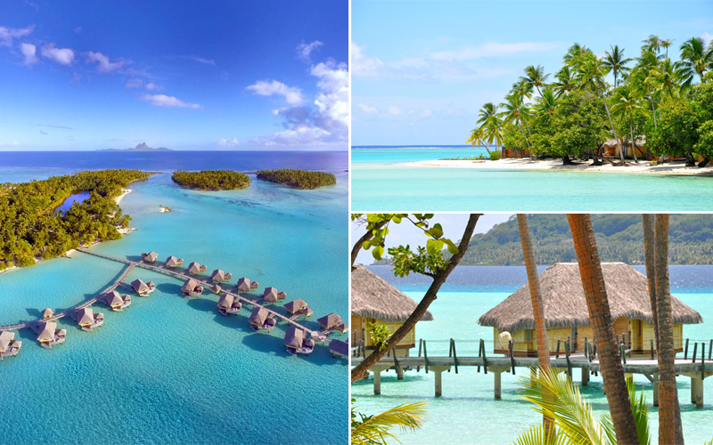 10 Most Romantic Villas In South Pacific Bora Bora Honeymoon Packages Le Taha
