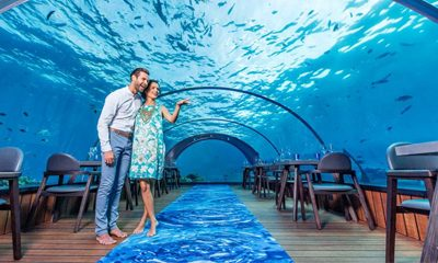 Top 8 Honeymoon Destinations for 2020