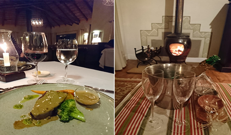 Paloma And Russels South Africa And Mauritius Blog Pumba Game Reserve Dinner And Champagne