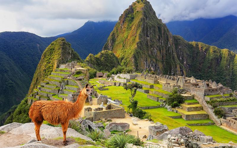 Vegan Honeymoon Destinations Peru Vegan Restaurants