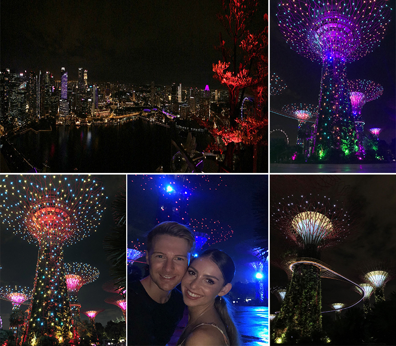 Robert And Samantha's Singapore And Maldives Blog Gardens By The Bay Light Show