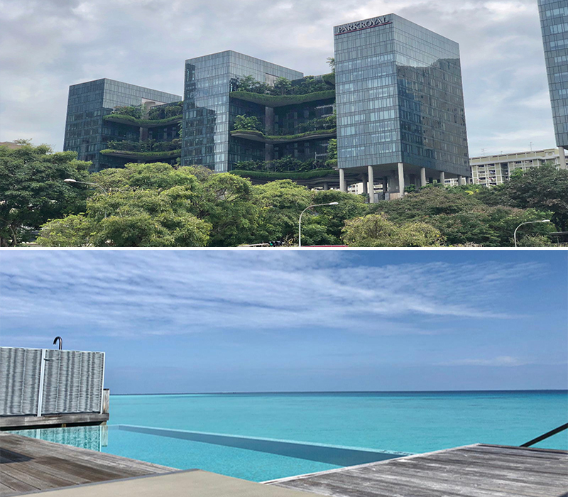 Robert And Samantha's Singapore And Maldives Blog Singapore And Maldives Impressions