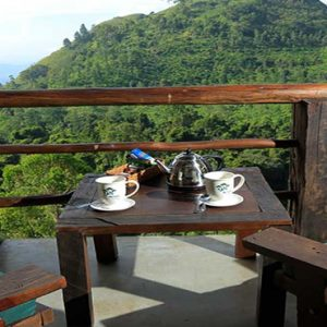 Sri Lanka Honeymoon Packages 98 Acres Resort & Spa Tea With A View