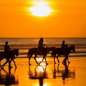 Nevis Honeymoon Packages Oualie Beach Resort Horse Riding
