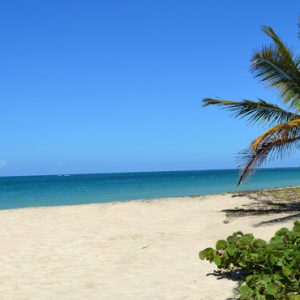 Nevis Honeymoon Packages Oualie Beach Resort Lovers Beach