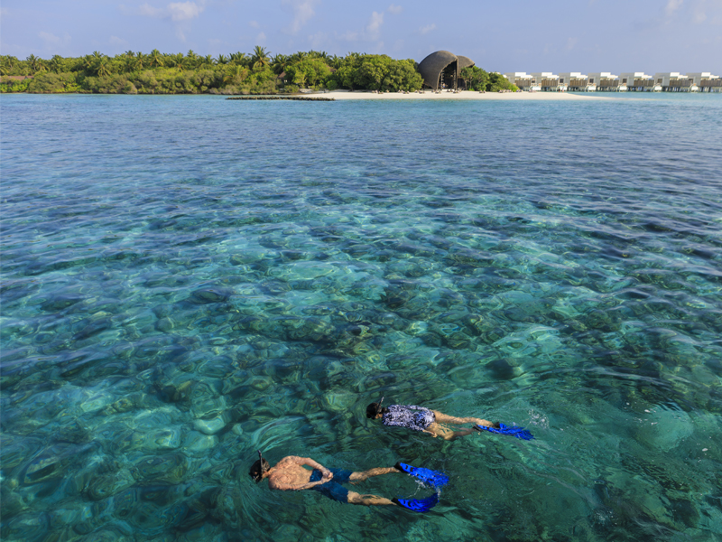 10 Reasons To Honeymoon At Dhigali Underwater Excursions