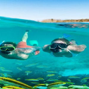 Barbados Honeymoon Packages Sandals Royal Barbados Watersports Snorkelling