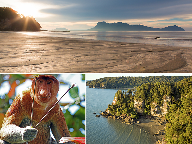 Romantic Things To Do In Borneo Malaysia Honeymoon Packages Bako National Park