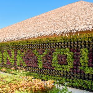 Maldives Honeymoon Packages Reethi Faru Resort Thank You Feature