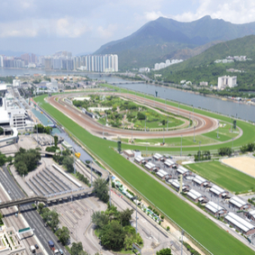 Hong Kong Horse Racing Tour - Hong Kong Honeymoon Packages - Honeymoon Concierge Service