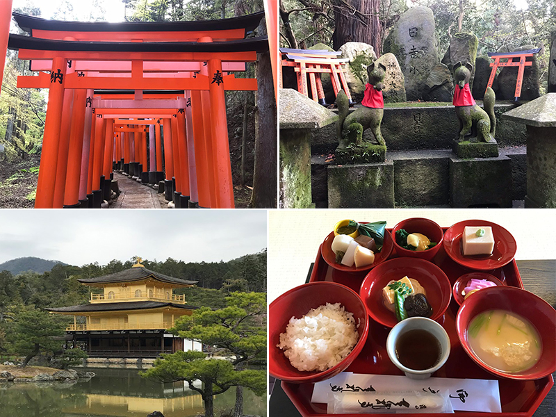 Holly's Japan Experience Golden Pavilion1