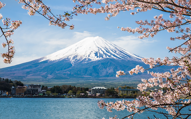 Holly's Japan Experience Mount Fuji