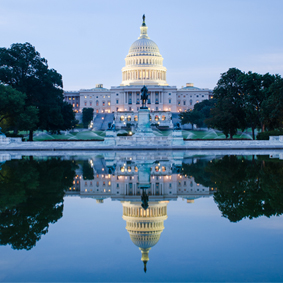 One Day Tour To Washington D.C From New York New York Honeymoon Packages Thumbnail