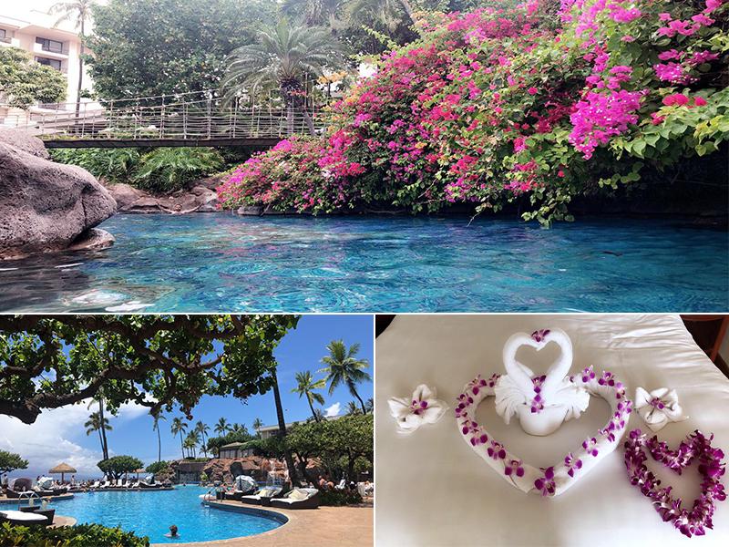 Raj And Karamdip's Hawaii, La And San Fran Honeymoon Blog Hyatt Regency Maui, Hawaii Stay