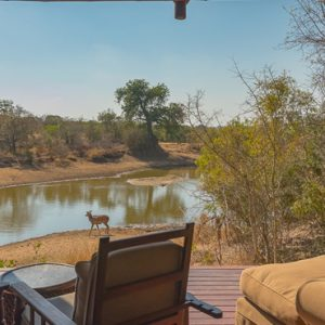 South Africa Honeymoon Packages Thornybush Game Reserve Thornybush Waterbuck Game Lodge 2